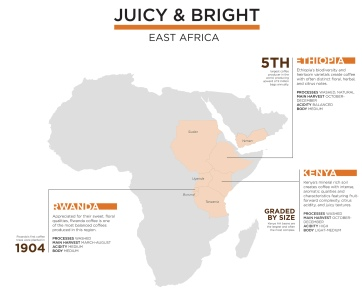 Fonte Specialty Coffee Map 2